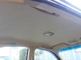 天井だってご覧の通りのです。