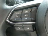 【ハンドルスイッチ】ハンドルを握ったまま、この車の快適装備を操作することが可能です☆クルーズコントロール機能も付いてます☆詳しくは営業スタッフまでお尋ねください☆