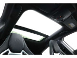 ペトロナスグリーンエディションにはパノラミックスライディングルーフも標準となり、爽快なドライブをお楽しみいただけます。